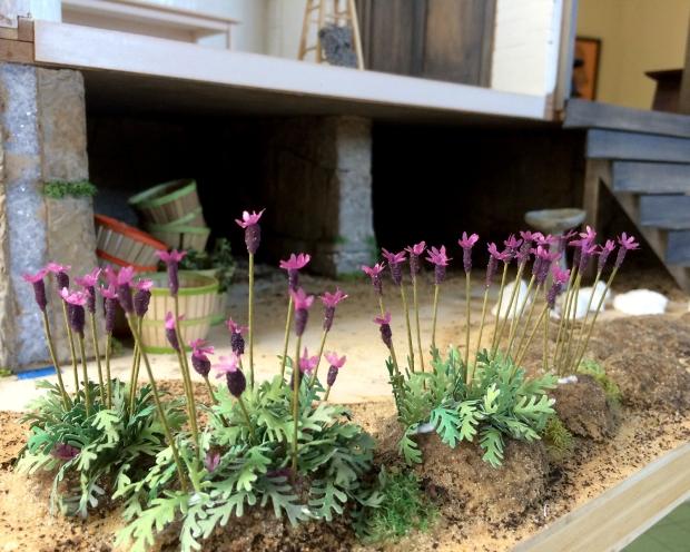 lavender_031916-1