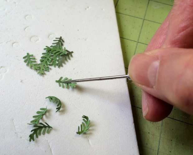 shaping_ferns_032016