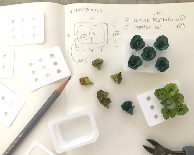 hydroponics_planning