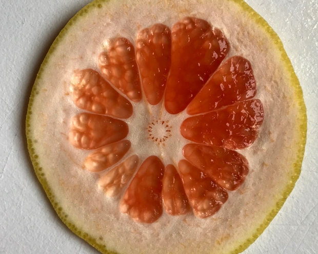 grapefruit_slice_032418