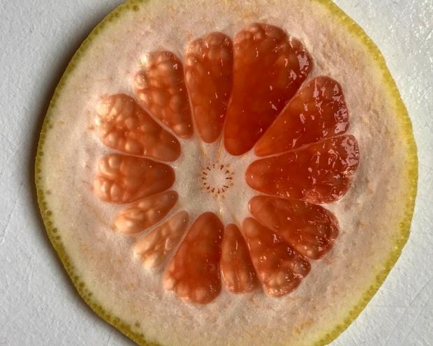 grapefruit_slice_032418
